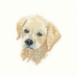Cross stitch Golden Labrador puppy