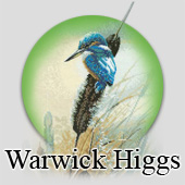 Warwick Higgs counted cross stitch designs