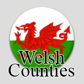 Counted cross stitch maps - Welsh Counties